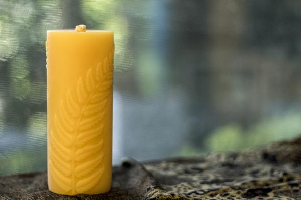 Simple Fern Candle