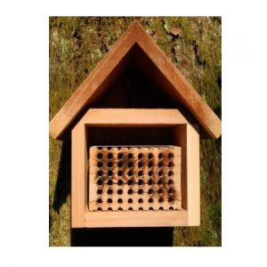 Mason Bee House With Tray